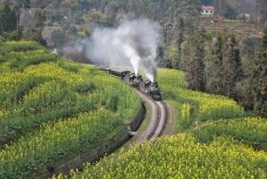 犍为县芭沟镇党建引领产业振兴 打造旅游发展新模式