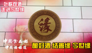 今世缘结善缘美酒传播中国缘文化
