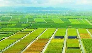 多部门协同推进富硒产业高质量发展